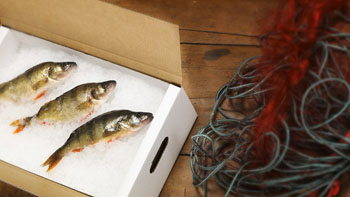 Materiali za pakiranje morske hrane