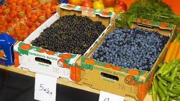 Materiali za pakiranje sadja in zelenjave